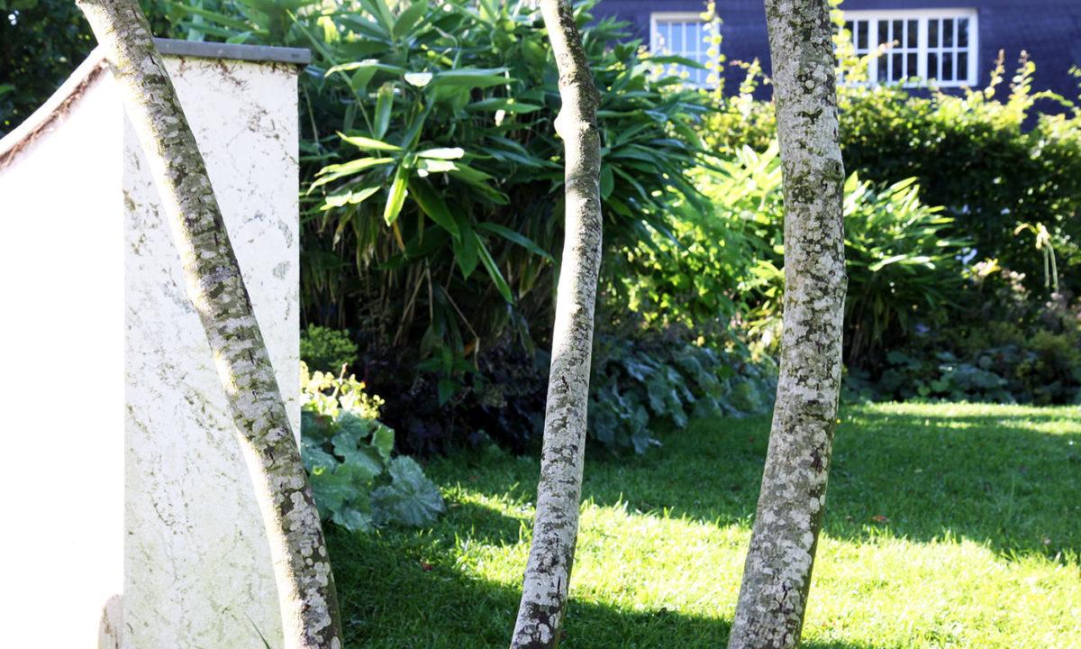 Gartengestaltung - Gartenerneuerung im Wiesbadener Komponistenviertel