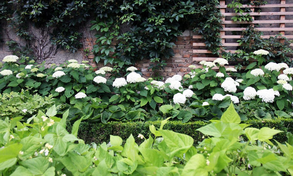 Gartengestaltung - Hofgarten in Rheinhessen Nutzgarten mit Ziercharakter