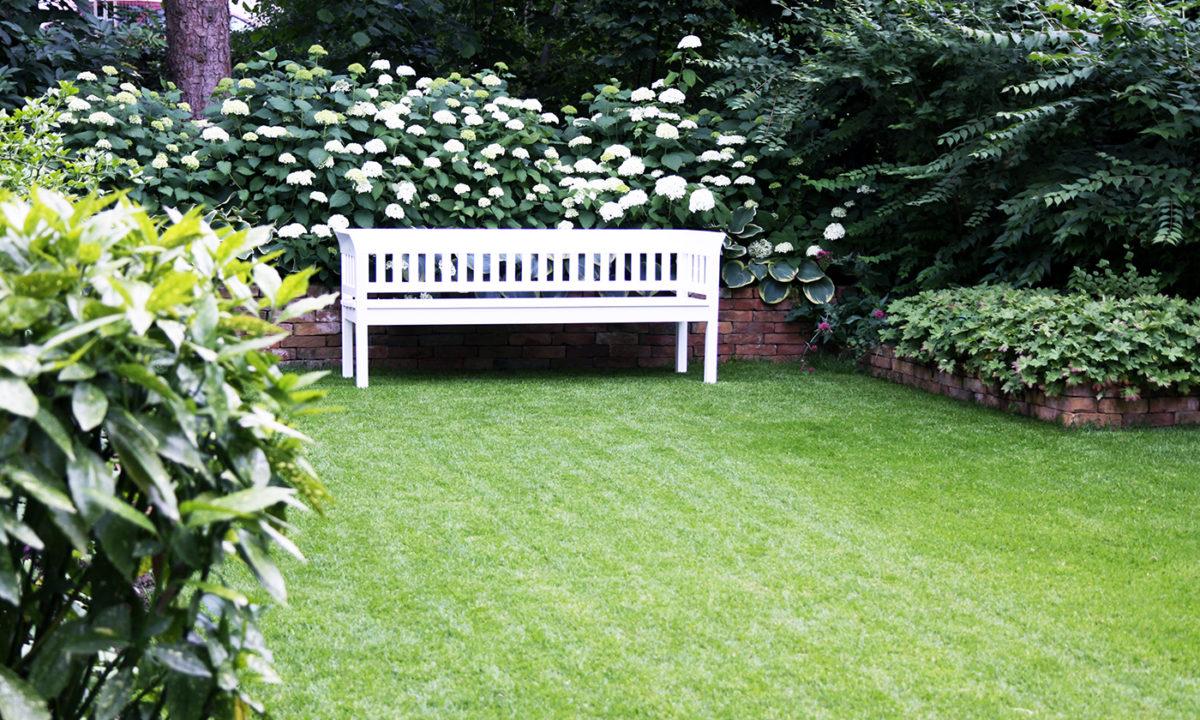 Gartengplanung - Umgestaltung eines Vorgartengrundstücks